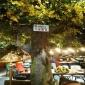 贵州假山门头仿真假树水泥门头设计制作支持定制